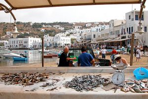 Fish-Market_new